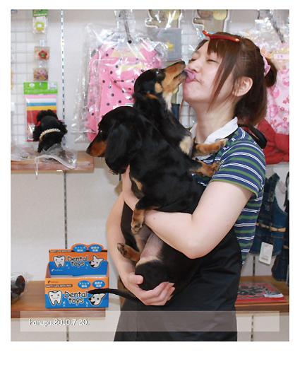 2010.07.-nikukiu-seibishi.jpg