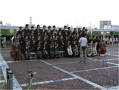 natu-no-hi-no-kobu1go.jpg
